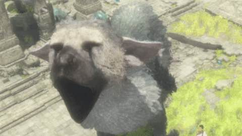 Enjoy The Latest Screens And Trailers From The Playstation Exclusive The Last Guardian